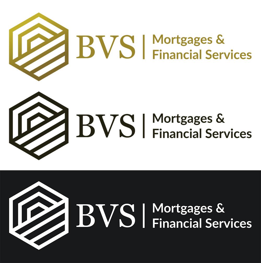 2020 - BVS logo